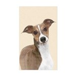 Italian Greyhound Sticker (Rectangle 10 pk)