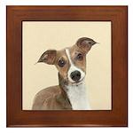 Italian Greyhound Framed Tile