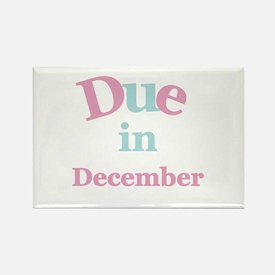 Pink Due in December Rectangle Magnet