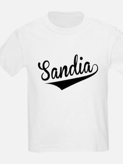 Sandia, Retro, T-Shirt