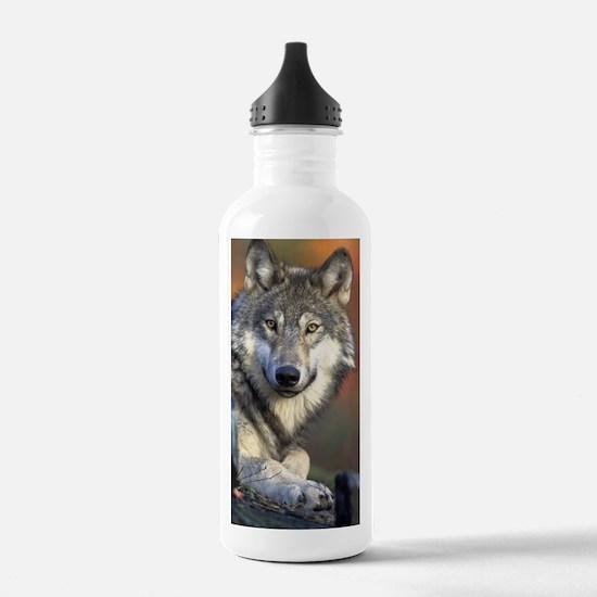 Cute Wild Sports Water Bottle