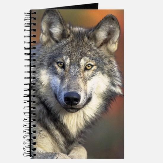 Unique Animal portraits Journal