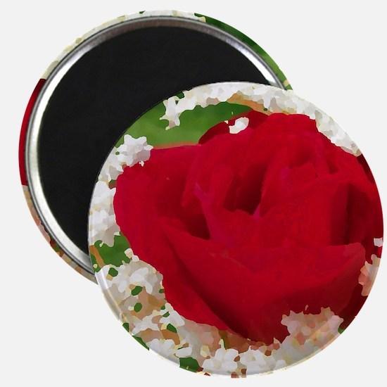 rote rose in weißen blüten Magnet