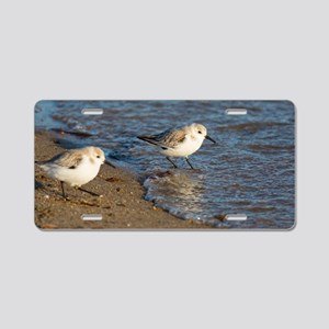 Sanderlings Aluminum License Plate