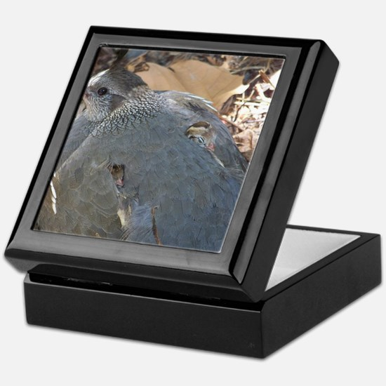 Mommy and Baby Quail Keepsake Box