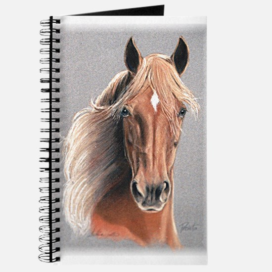 Paso Fino Horse Journal