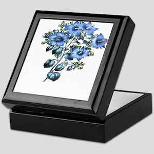 Paxton's Campanula fragilis Keepsake Box