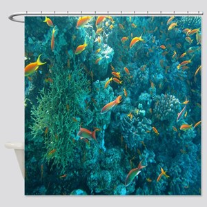 Completely new Sea Life Shower Curtains - CafePress FB93
