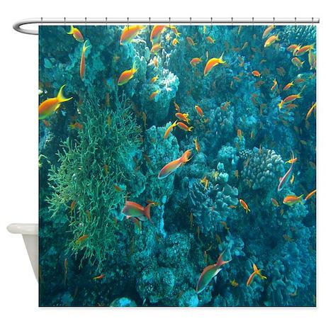 Ocean Life Shower Curtain By Beachtidings