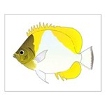 Pyramid Butterflyfish Posters