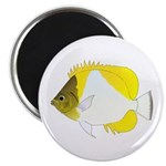 Pyramid Butterflyfish Magnets