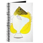 Pyramid Butterflyfish Journal