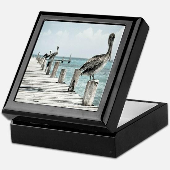 Pelicans Keepsake Box