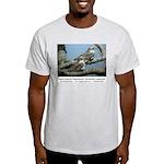 Sand-colored Nighthawk T-Shirt (ash gray)