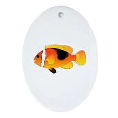 Fire Clownfish Ornament (Oval)