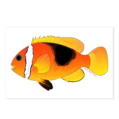 Fire Clownfish Postcards (Package of 8)