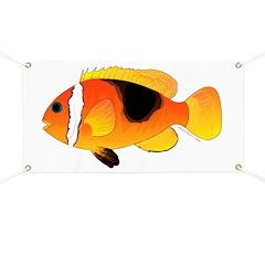 Fire Clownfish Banner