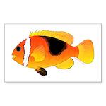 Fire Clownfish Sticker