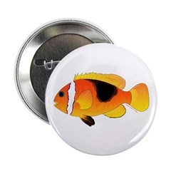 Fire Clownfish 2.25