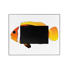 Fire Clownfish Picture Frame