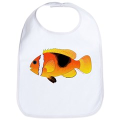 Fire Clownfish c Bib