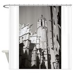 Gargoyles of La Catedral Shower Curtain