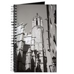 Gargoyles of La Catedral Journal