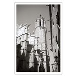 Gargoyles of La Catedral Large Poster