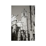 Gargoyles of La Catedral Rectangle Magnet