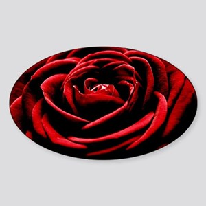 Single Red Rose Sticker (Oval)