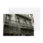 Punto de Vista Greeting Cards (Pk of 20)