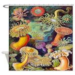 Vintage Colorful Sea Anemones Shower Curtain