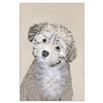Havanese Puppy Large Poster