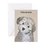 Havanese Puppy Greeting Cards (Pk of 20)