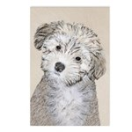 Havanese Puppy Postcards (Package of 8)