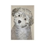 Havanese Puppy Rectangle Magnet (100 pack)
