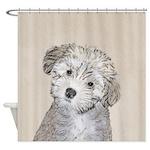 Havanese Puppy Shower Curtain