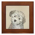 Havanese Puppy Framed Tile