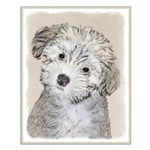 Havanese Puppy Small Poster