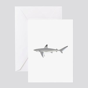 Galapagos Shark Greeting Cards