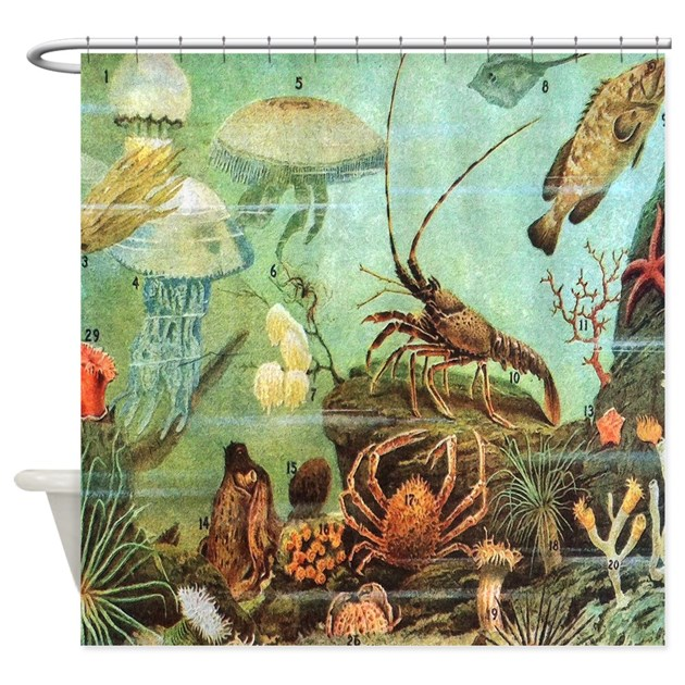 Vintage Colorful Sea Creatures Shower Curtain By