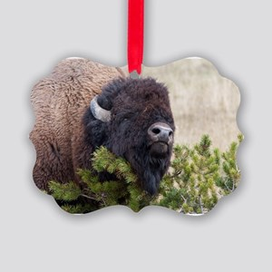 Christmas Bison Picture Ornament