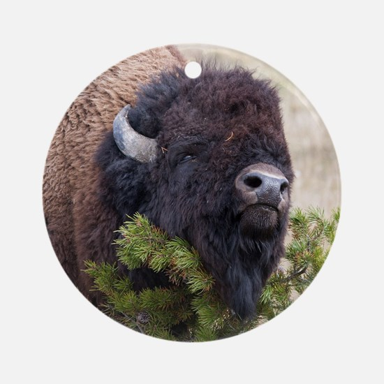 Christmas Bison Round Ornament