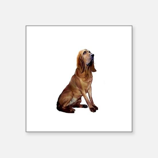 """Bloodhound (sit) Square Sticker 3"""" x 3"""""""