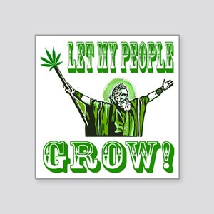 "Green Moses Square Sticker 3"" x 3"""