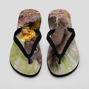 Happy Squirrel & Prized Mushroom Flip Flops