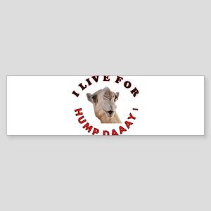 Hump Day Sticker (Bumper)