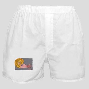Fabulous Nautilus Boxer Shorts