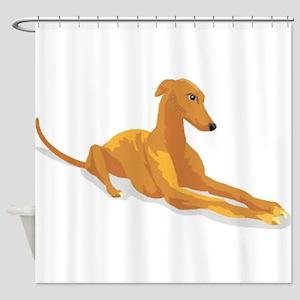 greyhound drawing Shower Curtain
