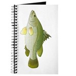Nile Perch Journal